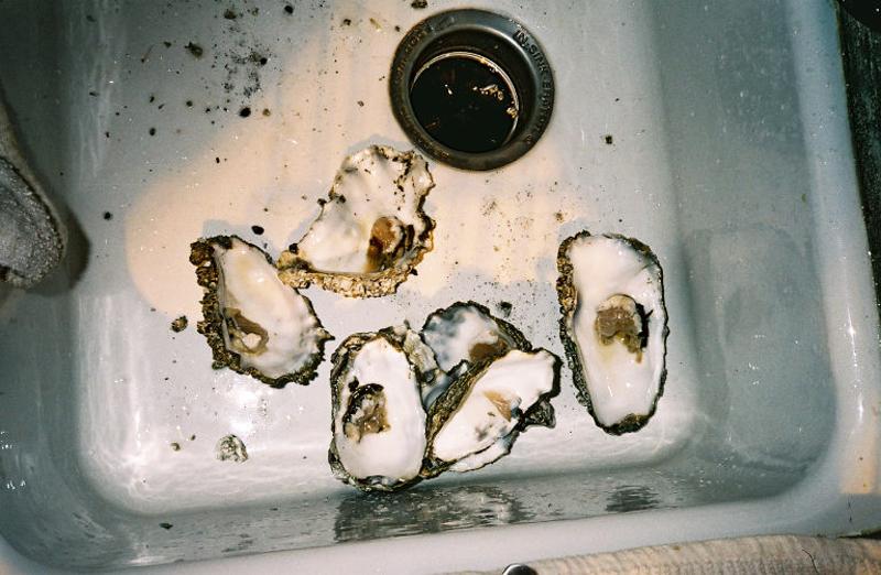 oystersink