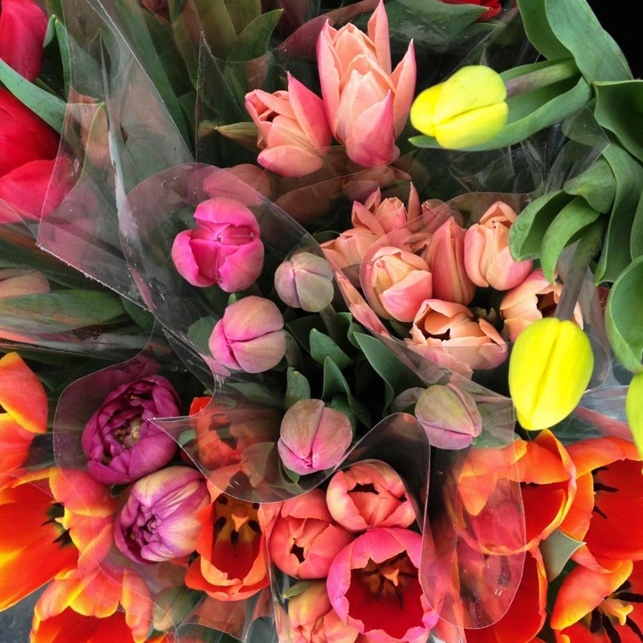 Market Tulips © Diana Koenigsberg 2013