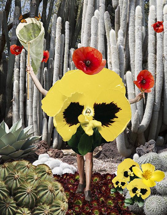 DK_white.cactus.poppies