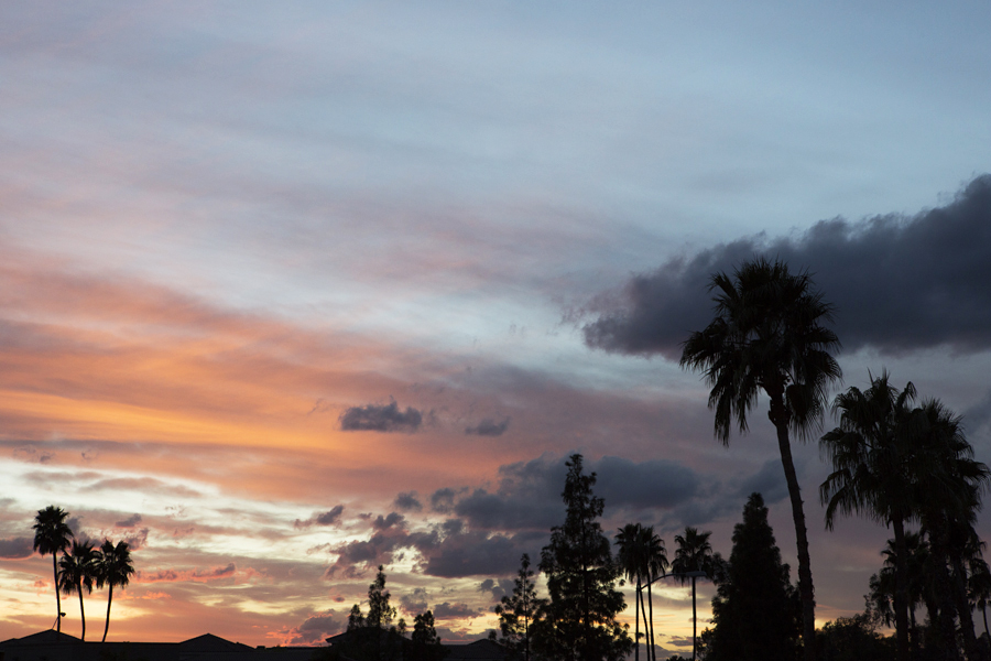 Phoenix at Sunset , copyright Diana Koenigsberg 2014