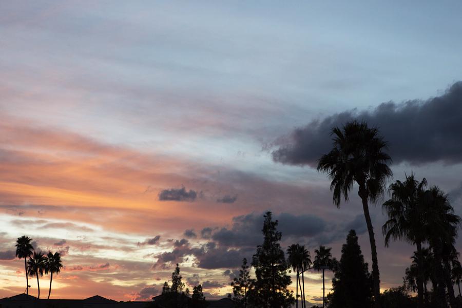 Phoenix at Sunset , copyright Diana Koenigsberg 2014