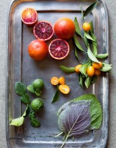 Jeanne Kelley for Garden Design, copyright Diana Koenigsberg 2015
